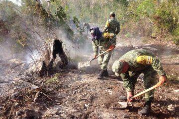 Lluvias ayudaran a sofocar los incendios en Quintana Roo