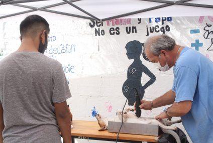 Valladolid primer lugar a nivel estatal en acciones de esterilización; se fomenta la protección y la tenencia responsable