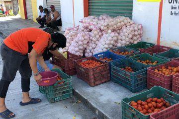 Subsidia Paoly Perera Maldonado subsidio 20 toneladas de tomate y cebolla a bajo costo